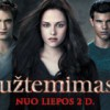 Užtemimas (Twilight Saga: Eclipse)