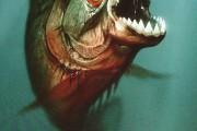Piranijos 3D (Piranha 3D)